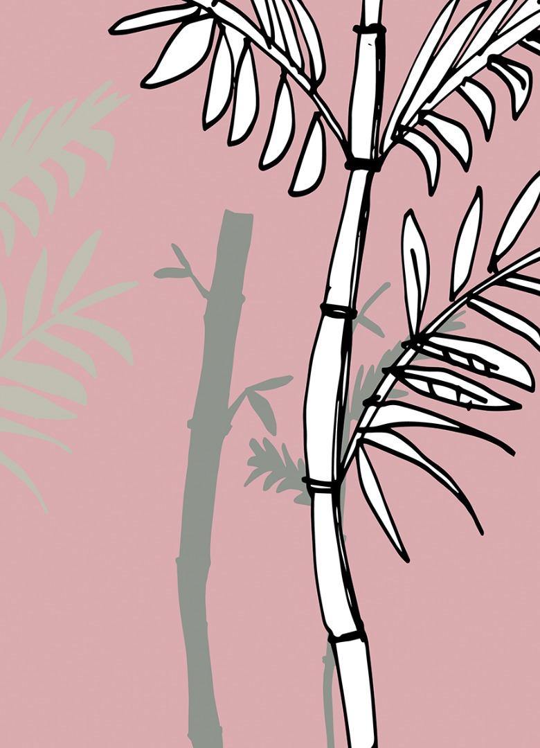 grafika ukazuje tytułowe bambusy